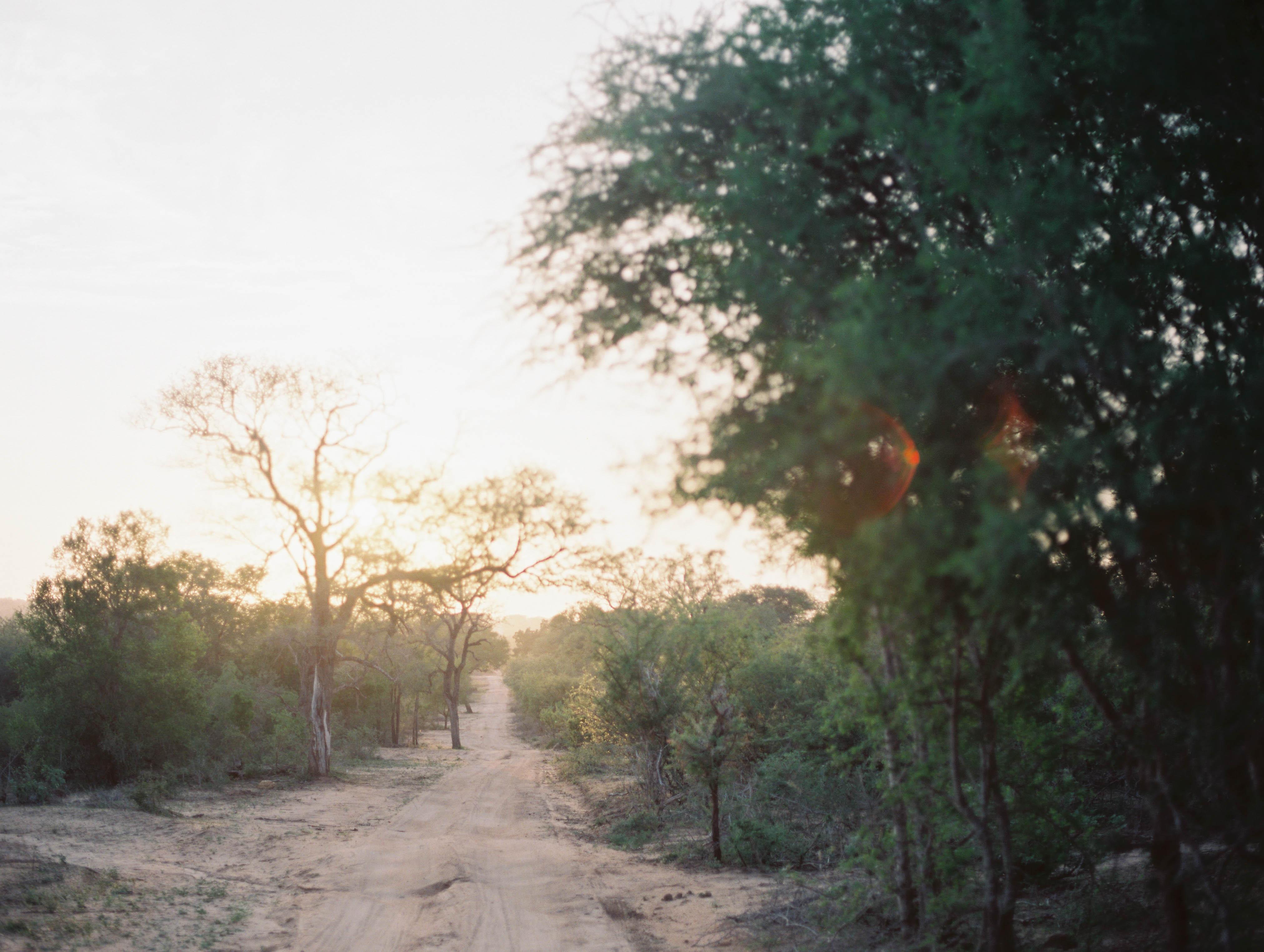 McKenna_Bleu_South_Africa_Lion_Sands_Stacy_Bauer_Photography-9-27