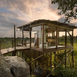 South Africa – Lion Sands Game Reserve