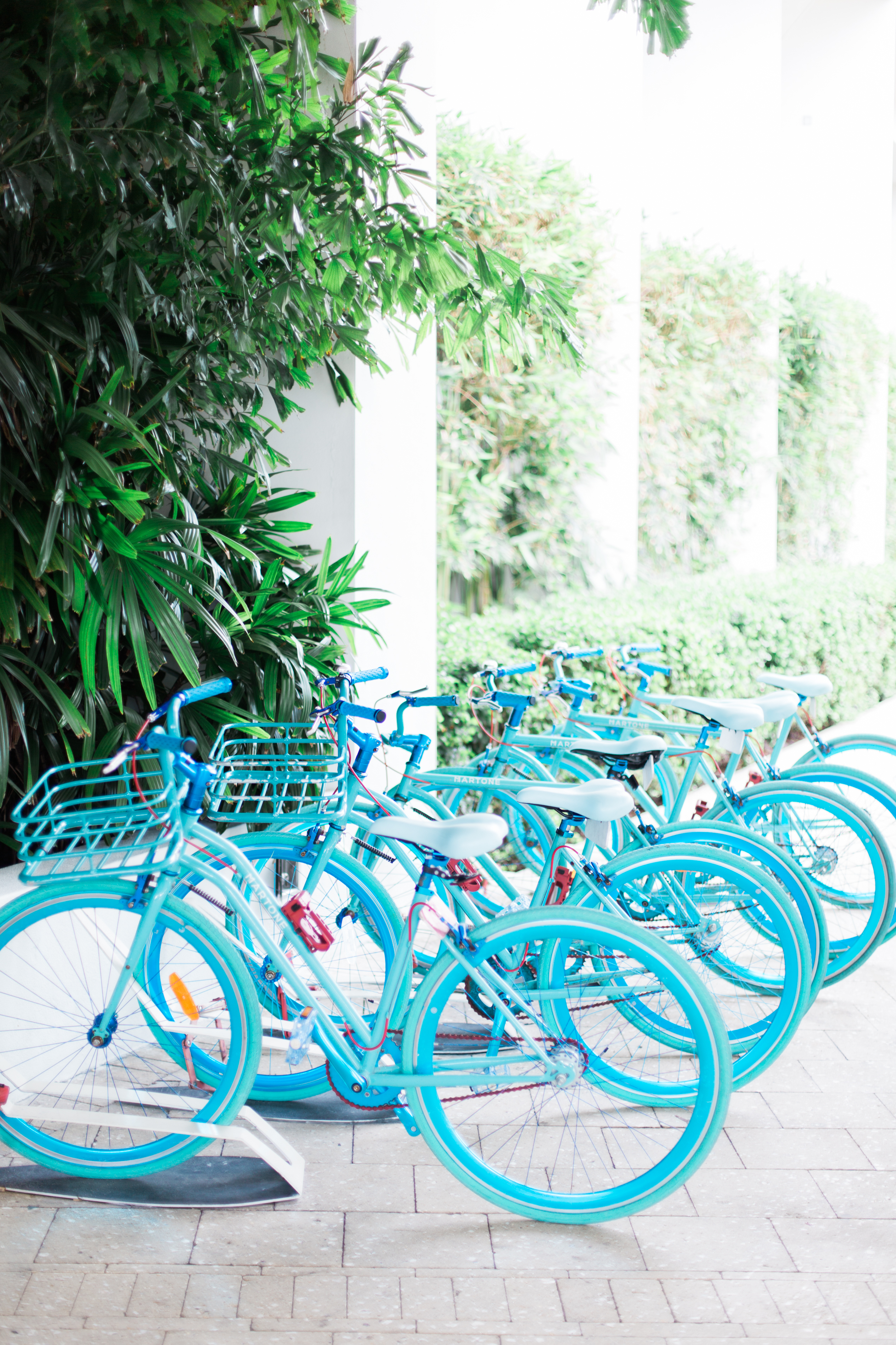 McKenna_Bleu_Miami_Travel_Guide_Color_Walls_Stacy_Bauer_Photography_photo-418