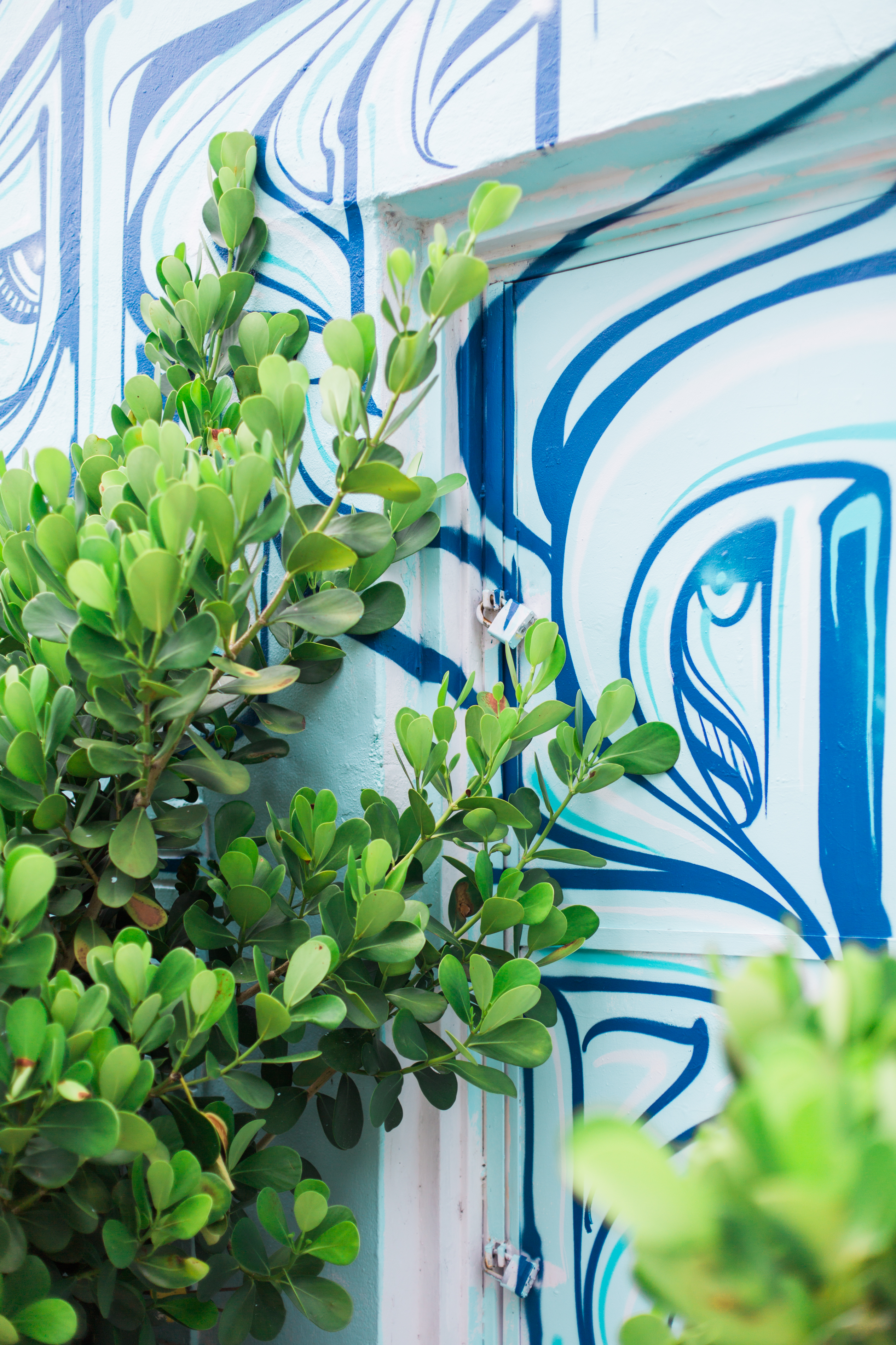 McKenna_Bleu_Miami_Travel_Guide_Color_Walls_Stacy_Bauer_Photography_photo-455
