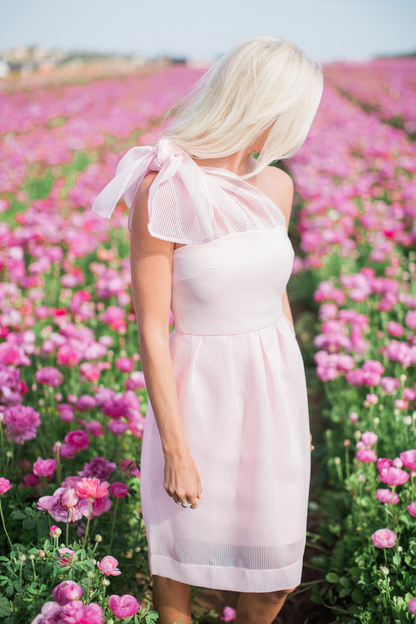 Pink Bow Dress Flower Fields