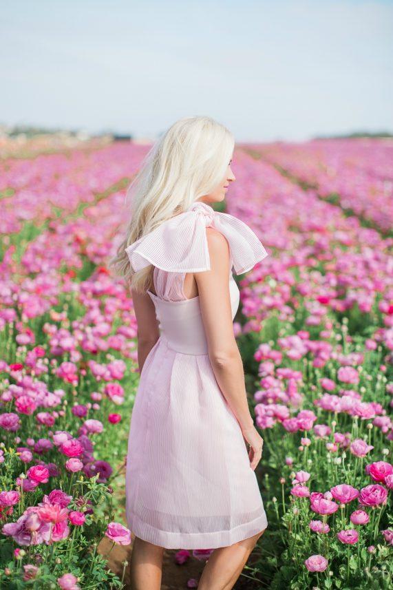 Pink Bow Dress + Flower Fields
